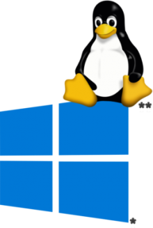 Tux sitzt auf Windows